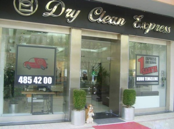 dry-clean-express