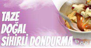 PööLabs Dondurma Bayilik Koşulları