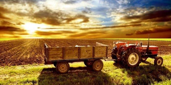 Tarım ve Hayvancılık Destekleri 2019