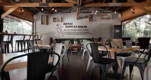 Coffeetainer Bayilik Şartları ve Franchise Bilgileri