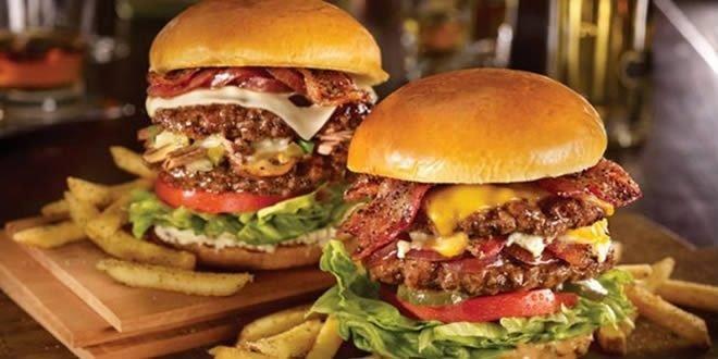 İş Kurmak İçin Gurme Burger Bayiliği Almak